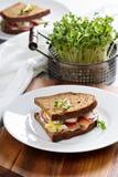 Sandwich avec les saumons fumés, les radis et l'oeuf Photos stock