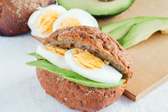 Sandwich with avocado Stock Photography