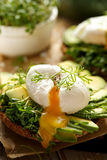 Sandwich with avocado and poached egg. With addition of fresh herbs Stock Photo