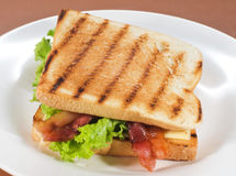Sandwich. With bacon and cheese Royalty Free Stock Images