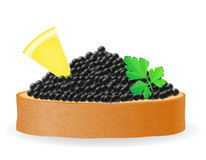 Sandwich with black caviar lemon and parsley vector illustration Stock Photo