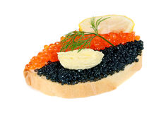 Sandwich with black and red caviar Stock Photos