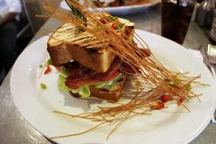 Sandwich BLT royalty-vrije stock afbeelding