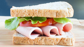 Sandwich bologna Royalty Free Stock Images