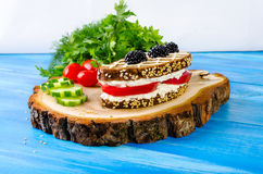 Sandwich bread and tomato, cucumber, blackberry, parsley and dil Royalty Free Stock Images