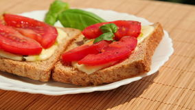 Sandwich brown bread pesto mozzarella tomato basil stock footage
