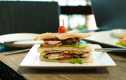 Sandwich for business lunch Stock Image