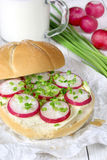 Sandwich with butter and radish. Sandwich with butter, radish and chives Royalty Free Stock Photography