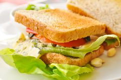 Sandwich in a cafe Royalty Free Stock Image