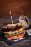 Sandwich with cereals bread with lettuce,ham, prosciutto Royalty Free Stock Photos