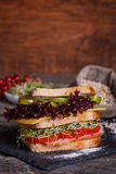 Sandwich with cereals bread with lettuce,ham, prosciutto Stock Photography