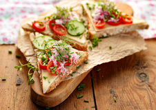 Sandwich with cheese, cherry tomatoes, cucumber, radish and fresh chives on wooden board Stock Image