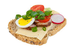 Sandwich with cheese, egg, tomato, radish Royalty Free Stock Photo