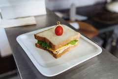 Sandwich with cheese and greens decorated with tomato in a white rectangular plate on a metal table royalty free stock image