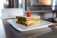 Sandwich with cheese and greens decorated with tomato in a white rectangular plate on a metal table royalty free stock photos