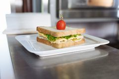 Sandwich with cheese and greens decorated with tomato in a white rectangular plate on a metal table stock photo