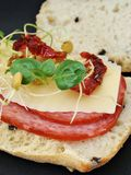 Sandwich with cheese and salami. Salami and cheese sandwich on olive ciabatta bread with  basil and sundried tomatoes Royalty Free Stock Photos