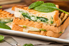 Sandwich with cheese and spinach Stock Image