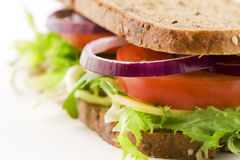 Sandwich with cheese and vegetables. Closeup of a delicously looking sandwich with cheese, lettuce, red onion and tomato.  Focus on onion. healthy food. grainy Stock Images