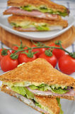 Sandwich with cherry tomatoes. Royalty Free Stock Images