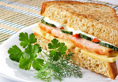 Sandwich with chicken cheese and vegetables Royalty Free Stock Photos