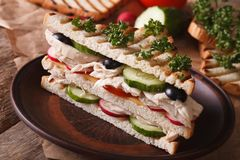 Sandwich with chicken on a plate and ingredients on the table Stock Image