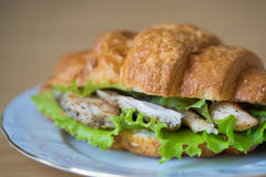 Sandwich with chicken. And salsd in croissant close up Royalty Free Stock Image