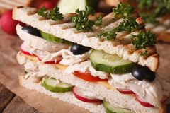 Sandwich with chicken and vegetables macro. horizontal Stock Images