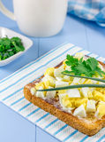 Sandwich with chopped eggs and verdure. Breakfast sandwich with chopped eggs and verdure Stock Photography