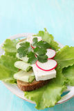 Sandwich with cilantro Royalty Free Stock Image