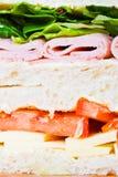 Sandwich close up Stock Image
