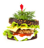 Sandwich close-up royalty free stock photography