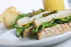 Sandwich Closeup. Closeup of a tuna fish sandwich Royalty Free Stock Image
