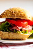 Sandwich with cold cuts Royalty Free Stock Images