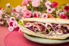 Sandwich coloré savoureux avec le petit pain français images libres de droits