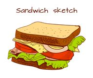 Sandwich colored sketch. VECTOR illustration. Sandwich colored sketch. VECTOR illustration isolated on white background Stock Photo