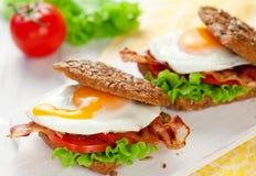 Sandwich complet avec l'oeuf sur le plat et le lard image libre de droits