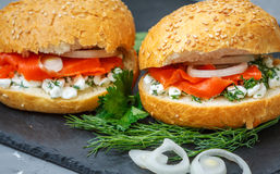 Sandwich con i salmoni Immagine Stock Libera da Diritti