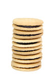 Sandwich cookies filled with chocolate cream isolated on white background. Royalty Free Stock Image