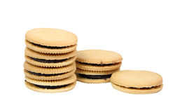 Sandwich cookies filled with chocolate cream isolated on white background. Stock Photos