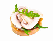 Sandwich of Corn Bread and Mushrooms Royalty Free Stock Image
