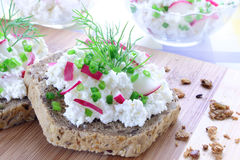 Sandwich with cottage cheese Royalty Free Stock Photo
