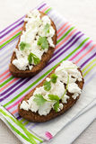 Sandwich with cottage cheese and coriander Royalty Free Stock Image