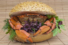 Sandwich with crab Stock Images