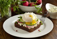 Sandwich with cream cheese, radish, cucumber, poached egg. Sandwich with cream cheese, radish, cucumber and poached egg Royalty Free Stock Photography