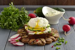 Sandwich with cream cheese, radish, cucumber and poached egg. Selective focus Royalty Free Stock Images