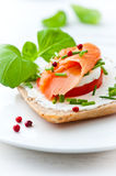 Sandwich with cream cheese and smoked salmon Royalty Free Stock Photos