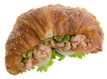 Sandwich, croissant sandwich, fast food for breakfast or lunch Royalty Free Stock Photo