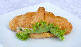 Sandwich croissant with vegetable on white plate. Stock Image