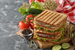Sandwich with cucumber, cheese and ham Royalty Free Stock Photo